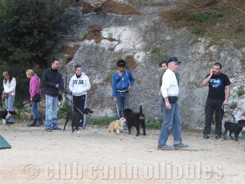 club canin ollioules